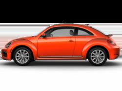 2020 beetle