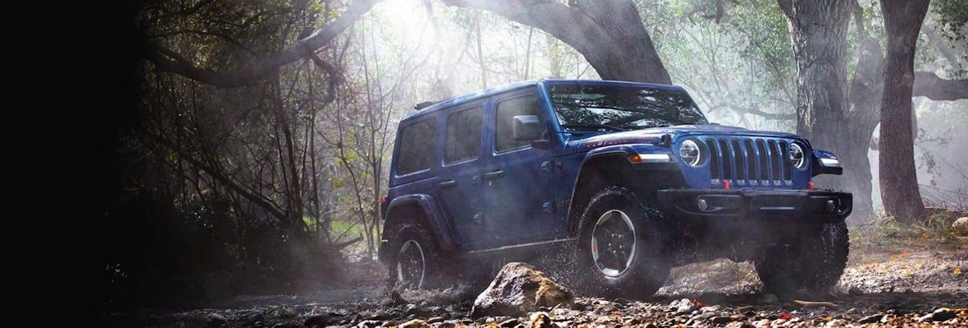 A 2020 Jeep Wrangler driving through a forest