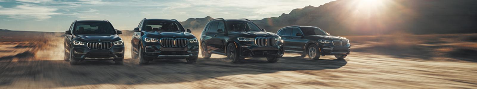 The BMW of Minnetonka Team