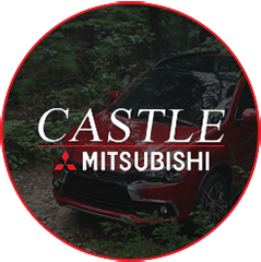 Castle-Mitsu-1-copy