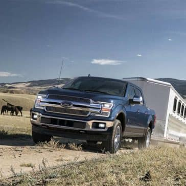 2019 Ford F-150 Towing a Trailer on Dirt Road