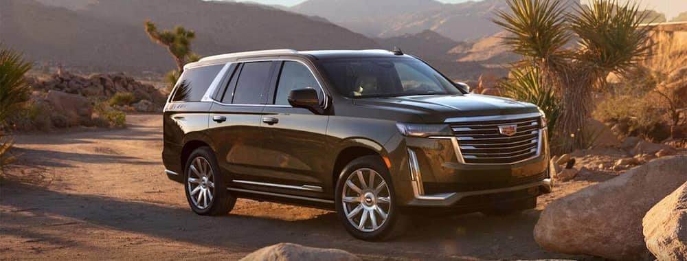 2021 Escalade Parked In Desert