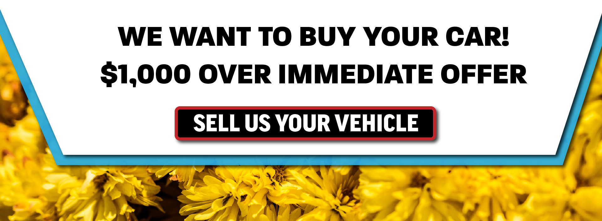 We Want to Buy Your Car_CDJR Fixed