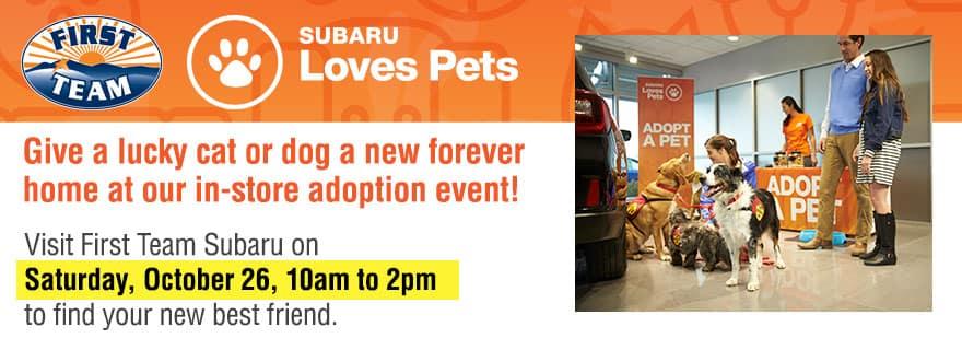 Subaru Loves Pets