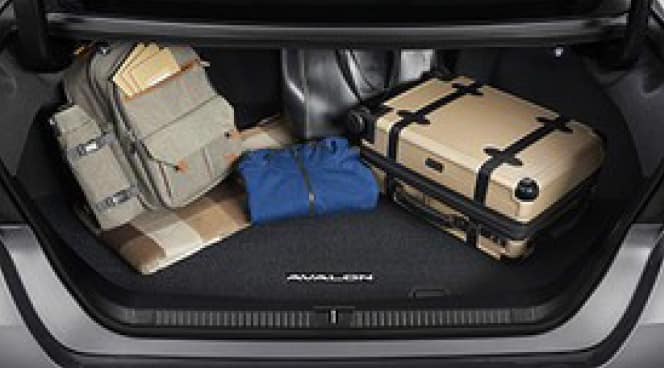 2017 Toyota Avalon Carpet Trunk Mat - Black