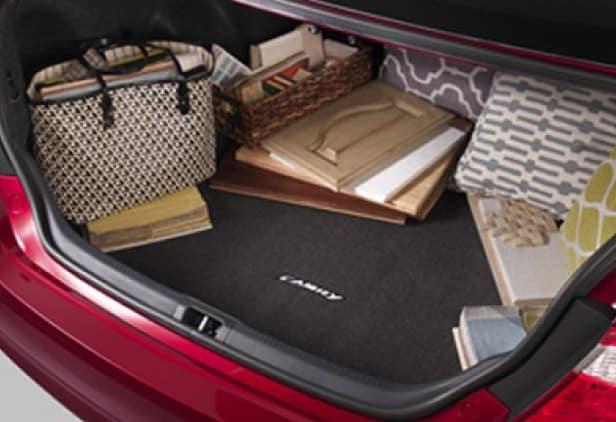 2020 Toyota Camry Carpet Cargo Mat