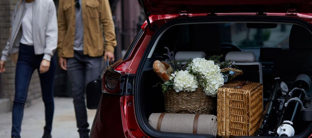 2019 Mazda CX-3 Rear Cargo Area