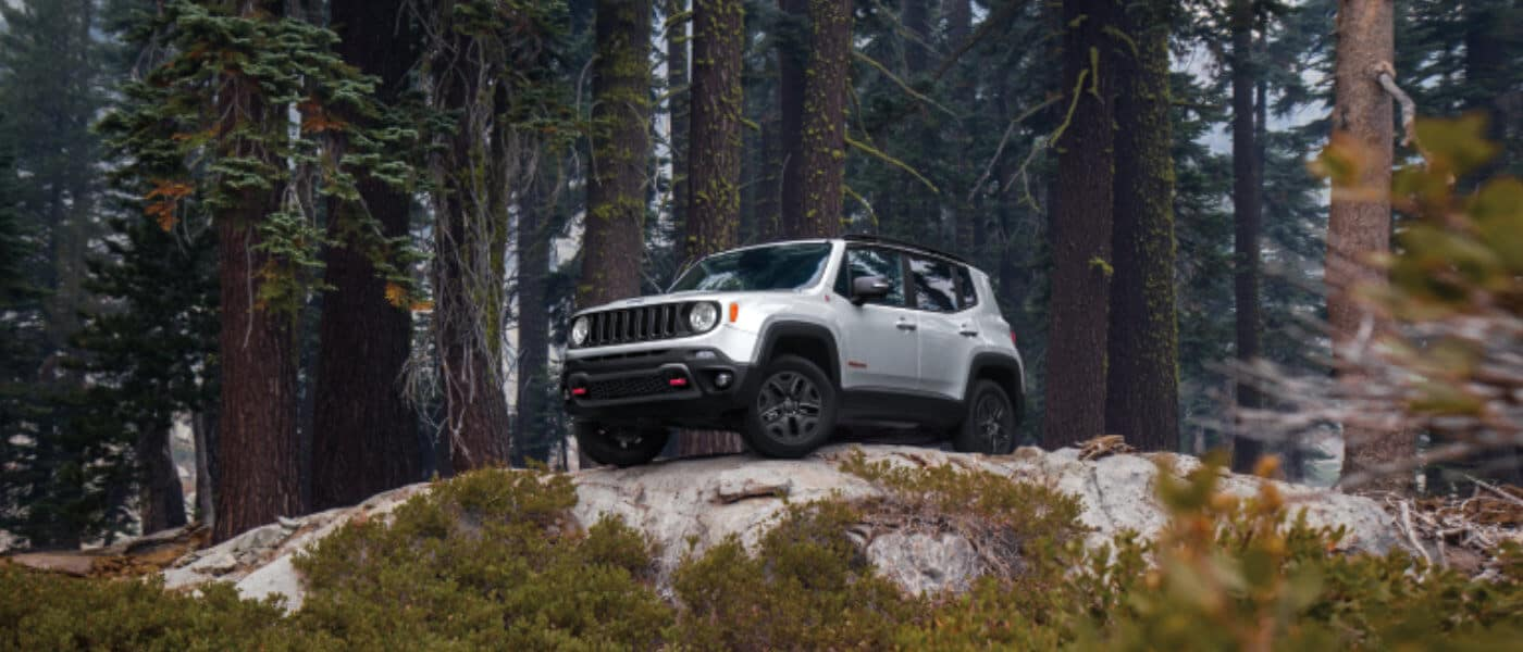 2019 Jeep Renegade Trailhawk exterior in woods off-road on rocks