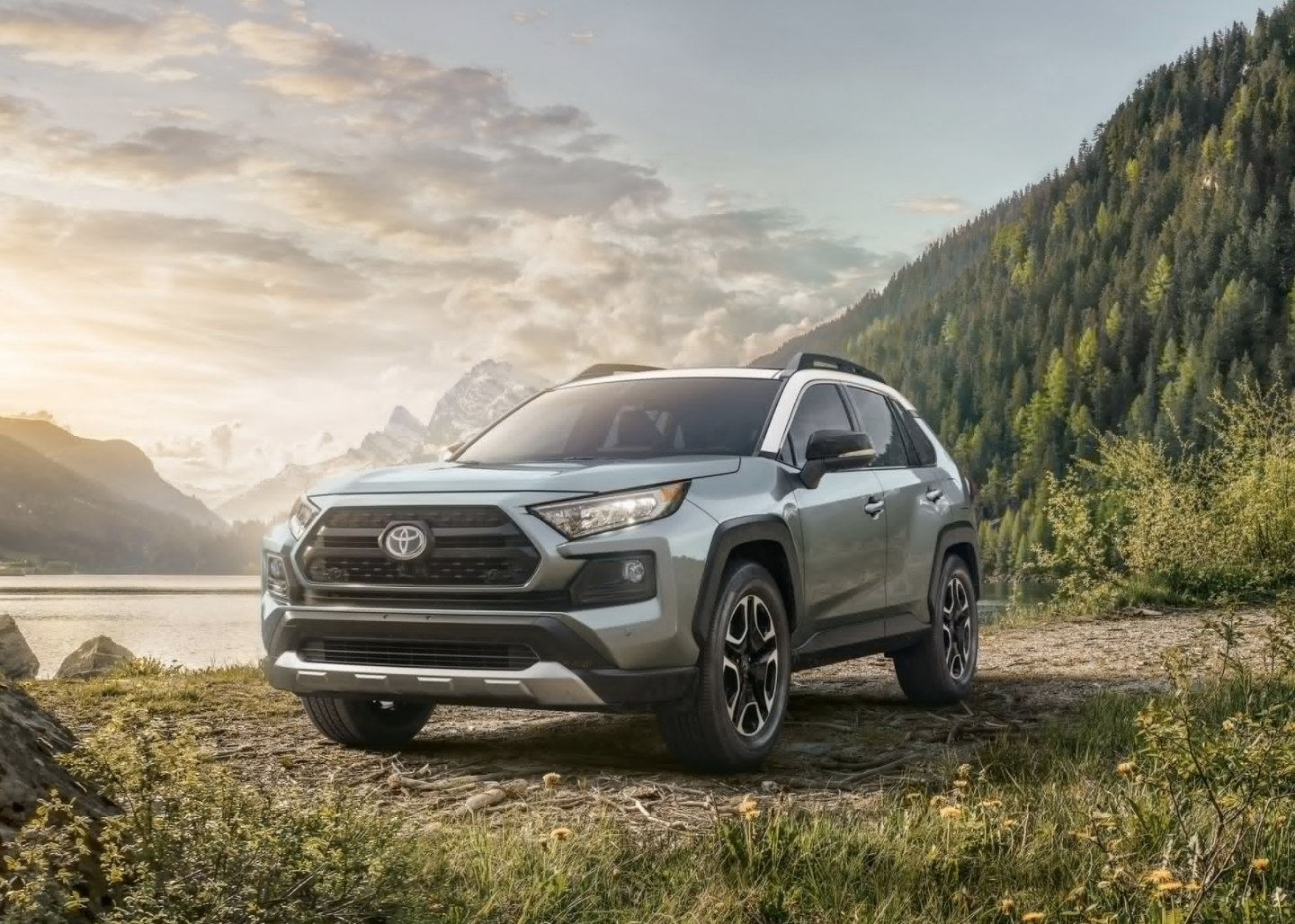 2020 Toyota RAV4 for Sale in Atlanta