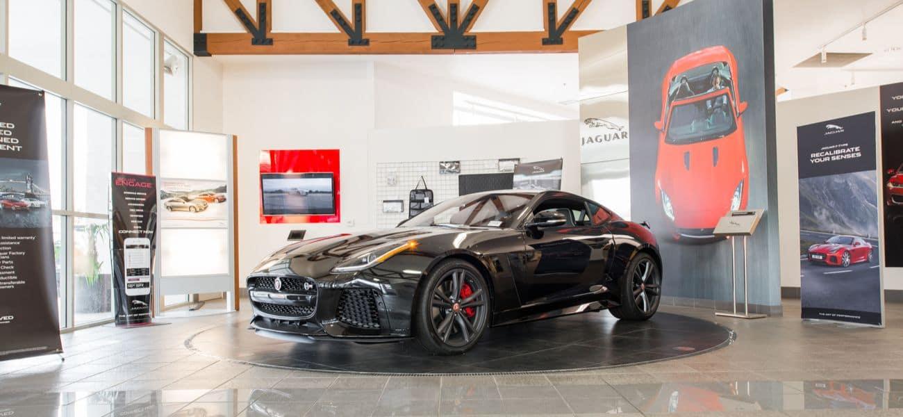 Jaguar about 2