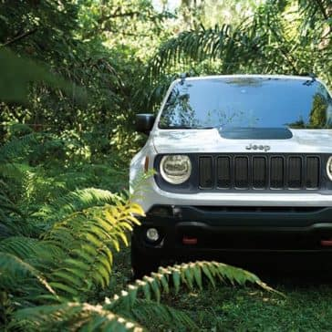 2019 Jeep Renegade In the Jungle